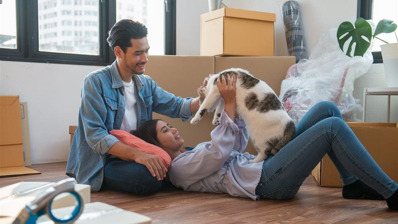 Tips for moving pets — to the White House or yours