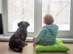 Alergias de invierno: trastornos que podría padecer sin saberlo